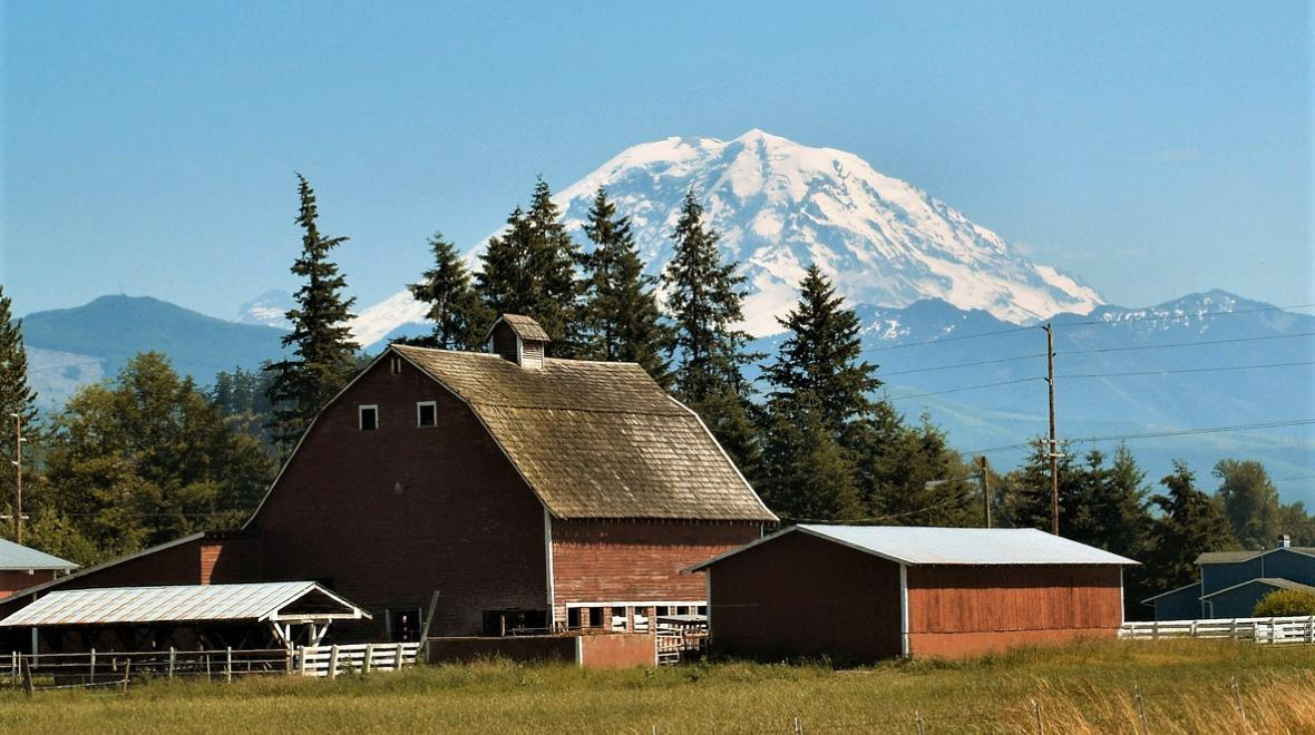 Mount Rainier viewed from Enumclaw with barn
