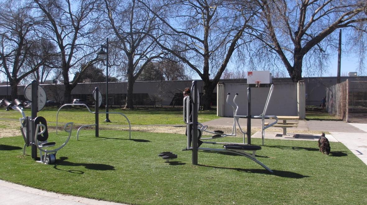 Georgetown Playground adult exercise equipment