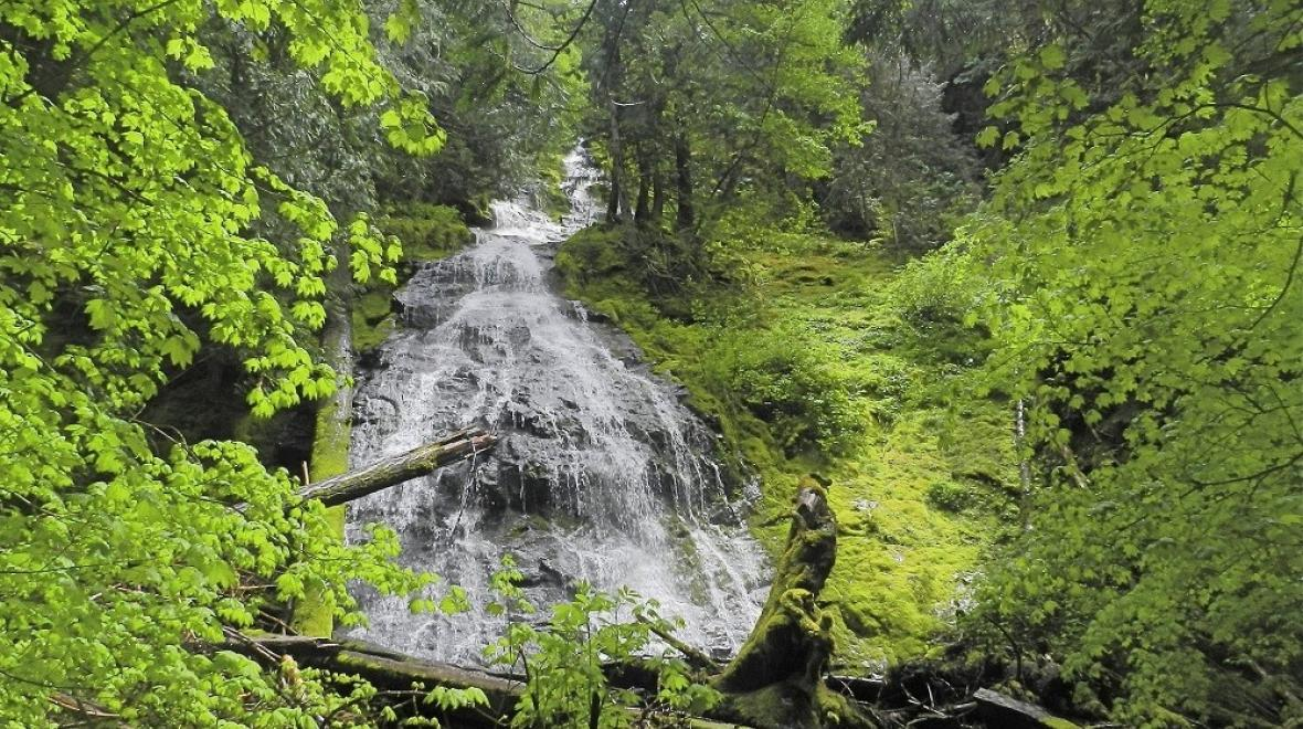 Kid-friendly-waterfall-hikes-south-sound-families