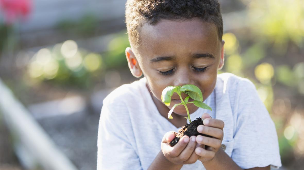 Boy holding plant in backyard garden at-home environmental learning projects kids