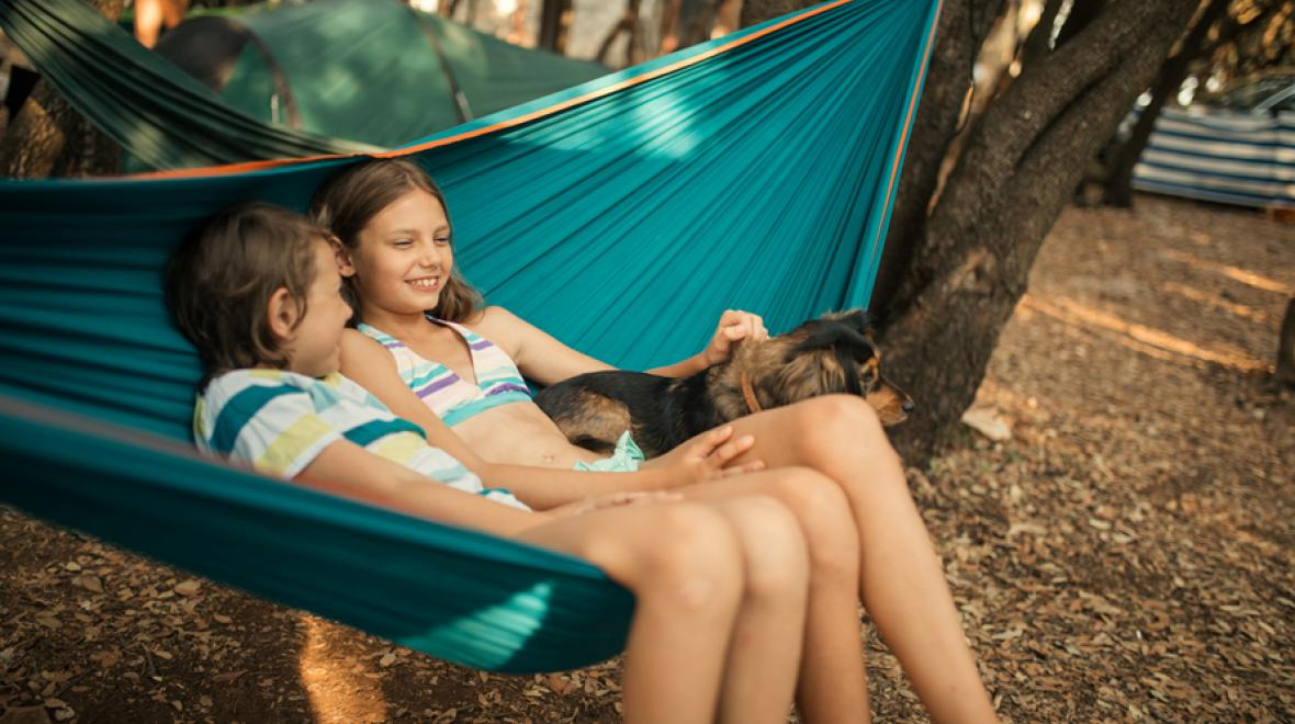 siblings and a dog in a hammock