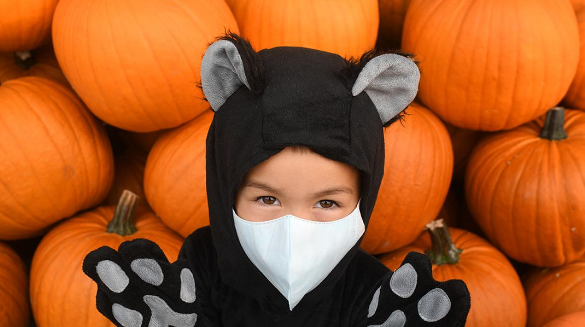 boy in a cat costume in front of pumpkins