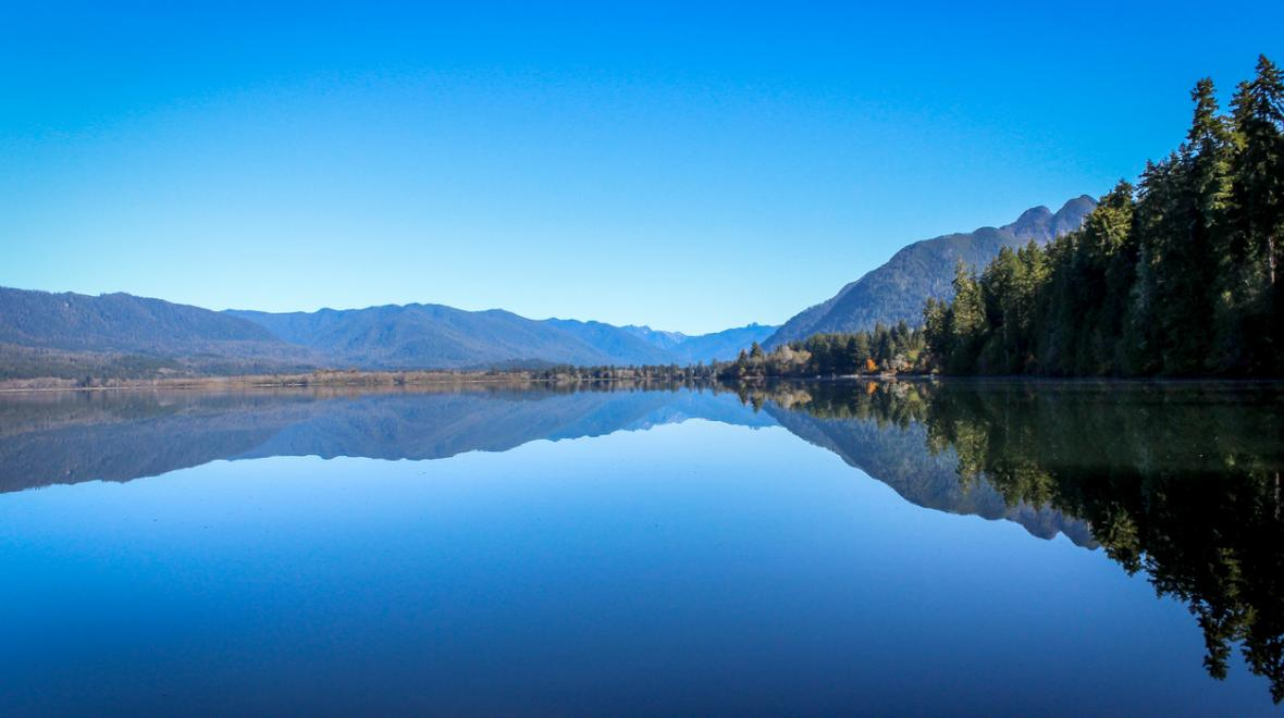 View of Lake Quinault on Washington's Olympic Peninsula best family getaway staycation spots for 2020-2021
