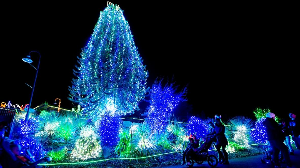 Best Holiday Light Displays Around Seattle, the Eastside and South