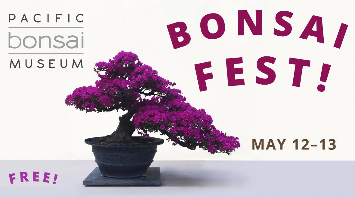 Bonsai Fest Seattle Area Family Fun Calendar Parentmap