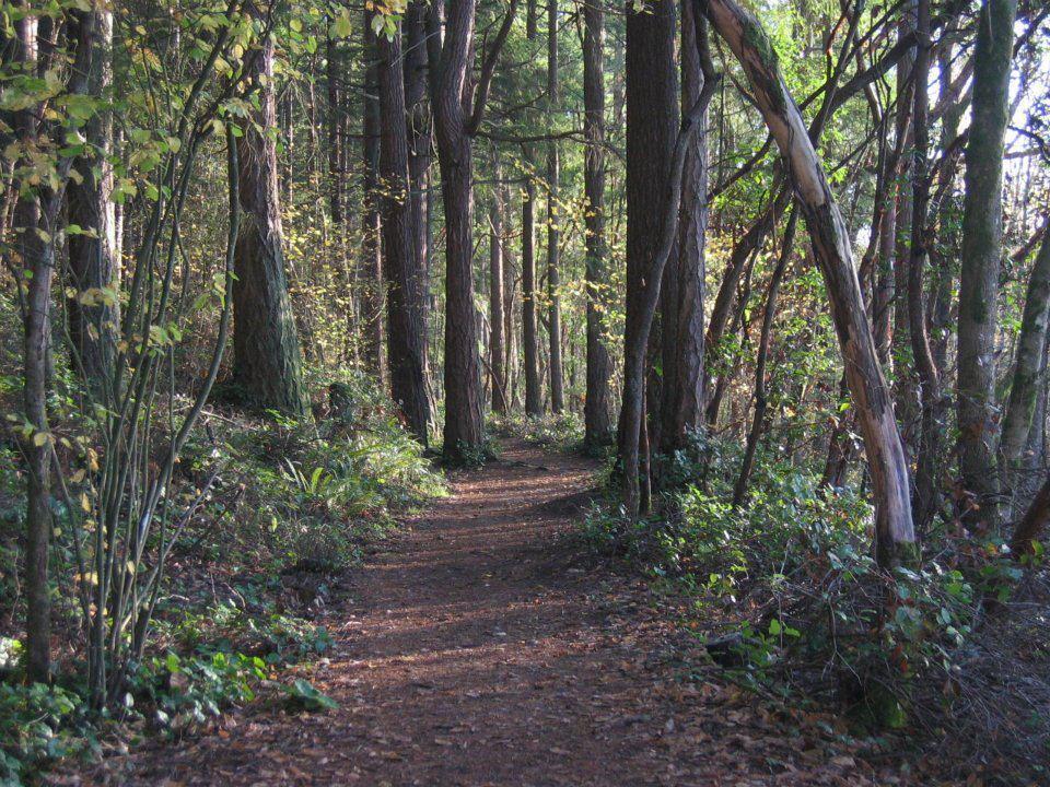 Tacoma Nature Center Camps