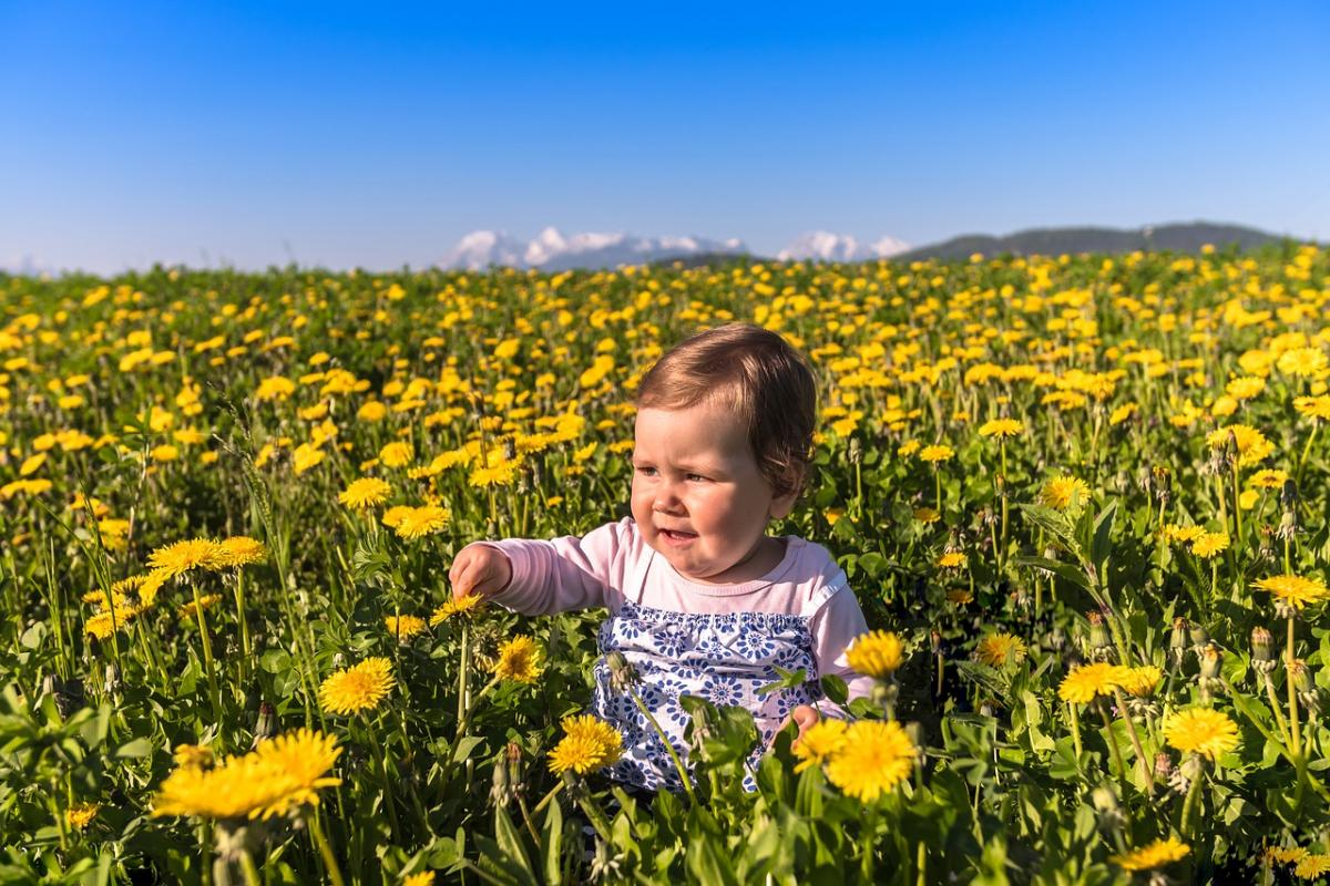 Картинки дети на поле