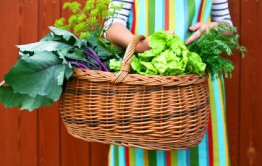 Basket of garden items