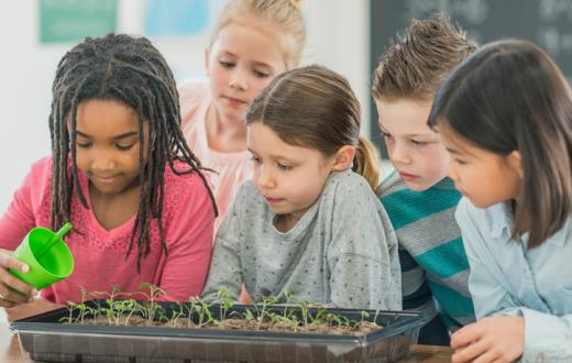 Green science in classroom
