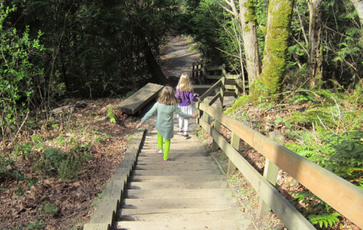 best-stairway-walks-families-seattle-bellevue-eastside-kelsey-creek-farm-park