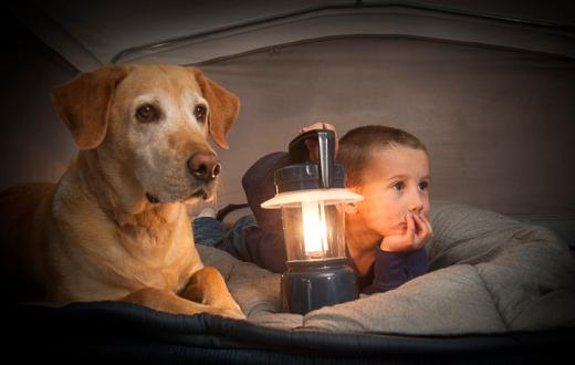 Kid and dog in tent