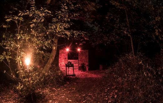 Haunted Forest of Maple Valley frightful fun