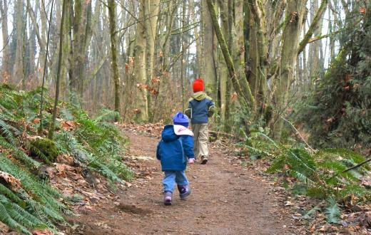 Kids hiking at Discovery Park in-city forest walks for families Seattle