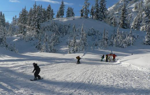 Mt. Baker ski area with kids