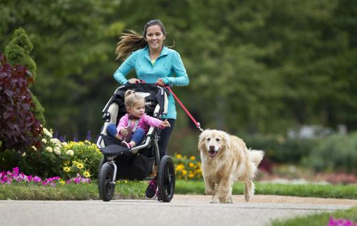 Mom with stroller and dog running in the park