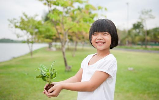 Young Chinese girl holding a plant