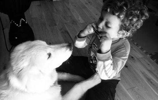 A young boy plays a harmonica for his dog