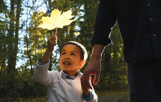 little boy with big autumn leaf
