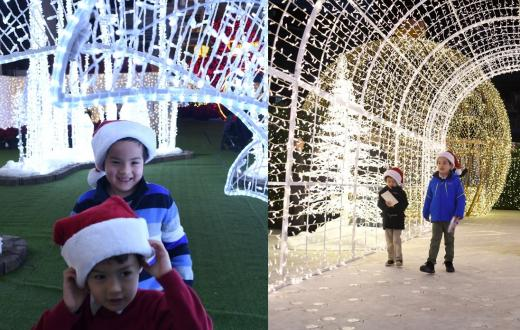 Enchant-v-Lumaze-seattle-holiday-light-show-maze-how-to-choose