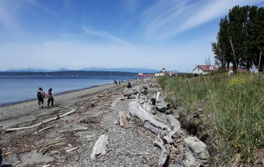 Discovery Park beach scene people walking best things to do with kids
