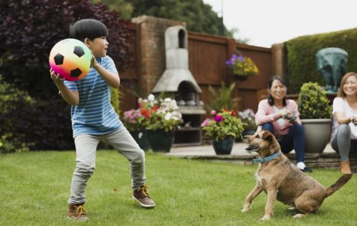 kid-playing-with-dog