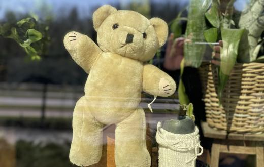 teddy-bear-window-seattle-area-families-helping-neighbors-kindness-community