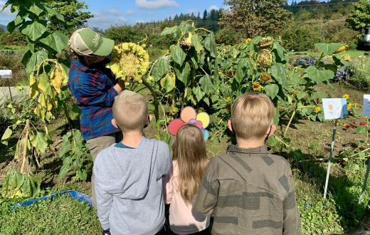 kids learning from farmer at Oxbow Farm in Carnation near Seattle fun family field trip fall 2020