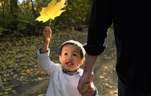 Boy holding autumn leaf with light on his face best family photo tips
