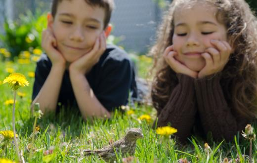 Boy and girl lying in the grass in their yard looking at a bird citizen science projects for Seattle families