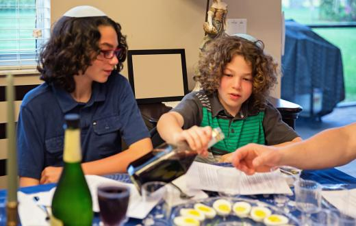 Two brothers with brown curly hair sit at the family table participating in a Passover Seder with wine and hardboiled eggs