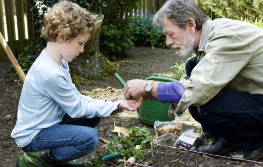 Grandad-and-kid-gardening
