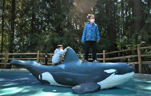Young boys standing on Orca sculpture at new Suquamish Shores Natural Play Area playground in Suquamish Washington near gravesite of Chief Seattle
