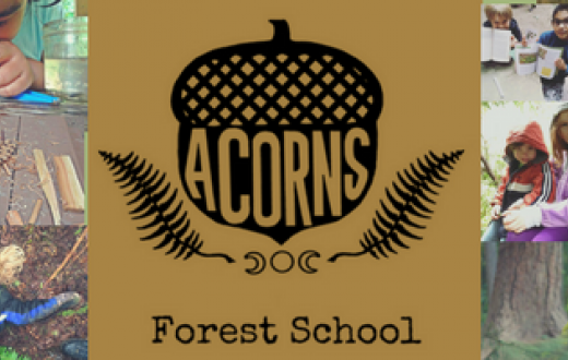 ACORNS NW Forest School