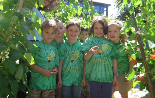 The Evergreen School Summer Program