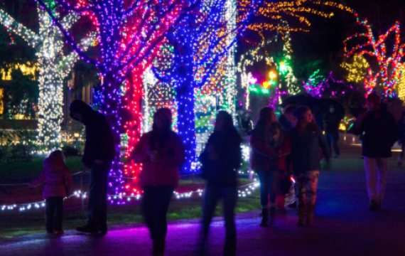 quality design 90038 7653a Best Holiday Light Displays Around Seattle, the Eastside and ...
