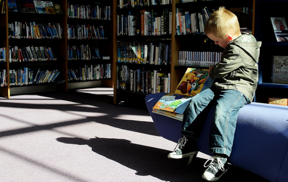 Young boy reading in sunny library