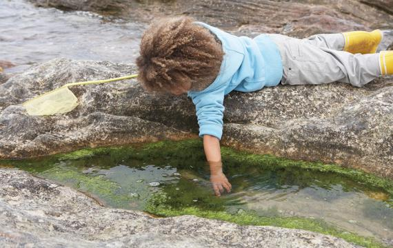 kid reaching into a tidepool why laying on a rock