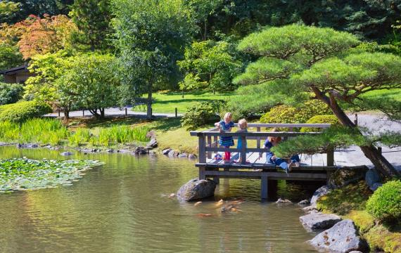 seattle japanese garden scene - garden now open by appointment summer 2020