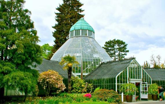 W.W. Seymour Conservatory in Tacoma's Wright Park open for families by appointment Seattle Bellevue Puget Sound